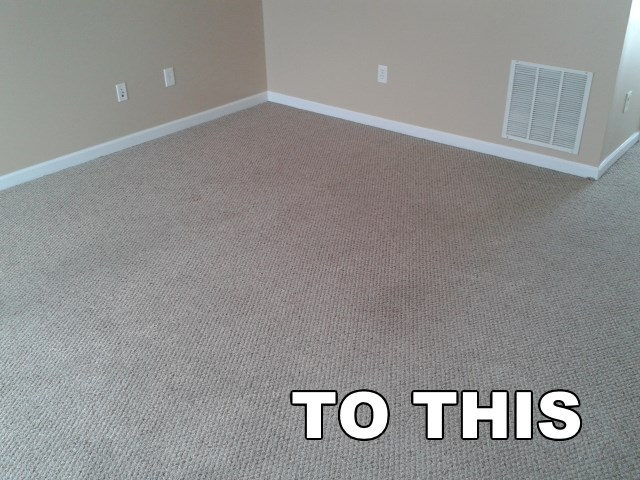 clean family room carpet