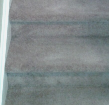 Green Solutions Carpet And Upholstery Cleaning