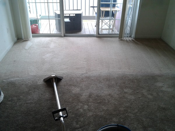 Dirt Dust And Debris Every Day Of The Week So Getting Your Home S Carpet Professionally Cleaned Is A Important Task Shouldn T Be Overlooked